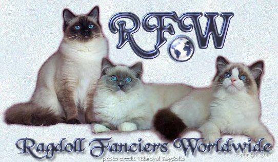 Ragdoll Fanciers Worldwide Cat Club, for Ragdoll Cats and Ragdoll kittens and Ragdoll lovers around the world
